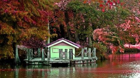 ataturk-arboretumu-istanbul